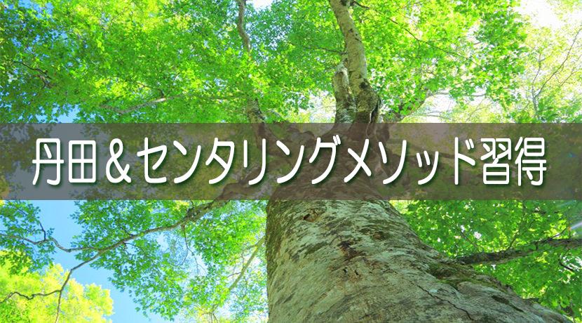 丹田&センタリングメソッド習得